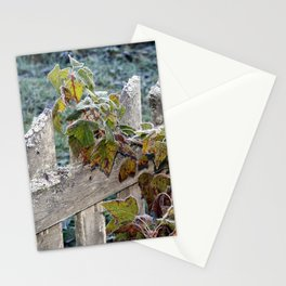 Climbing Over Stationery Cards