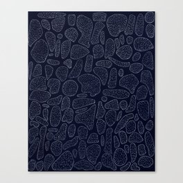 Hairy Astroids Canvas Print