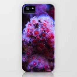 Under the Sea Blooming Magenta Coral Reef Sea anemone Underwater Photography Colored Lustre Print iPhone Case