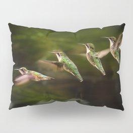 Humming Bird in Flight Pillow Sham