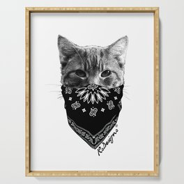 Animal Bandits - Kitty Serving Tray