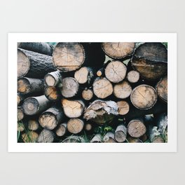 Switzerland stacking pile wood Art Print