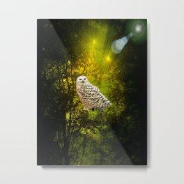 Owls Hideaway! Metal Print