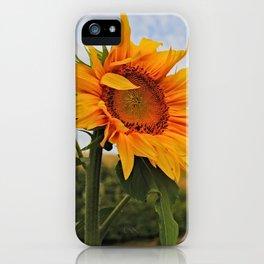 Sunrise Sunflower iPhone Case