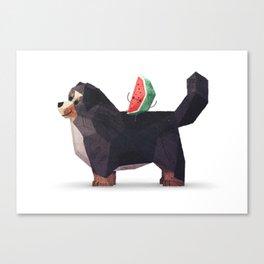 Watermelon on Bernese Mountain Dog Canvas Print