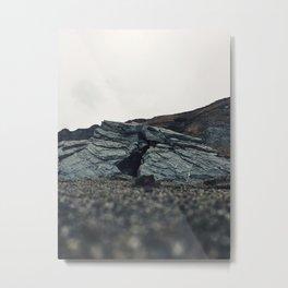 Goat Rock Beach Metal Print
