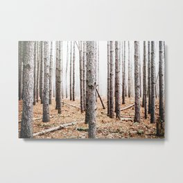 Skinny Pine Forest Metal Print