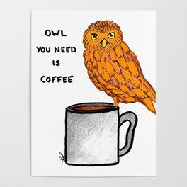 Owl youo need is coffee Poster