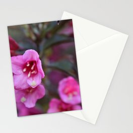 Pink Flowers with Bokah Stationery Cards