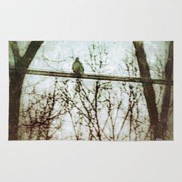 Lonesome Dove Rug