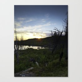 Blueberry Sunset Canvas Print