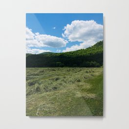 Fresh Hay Metal Print