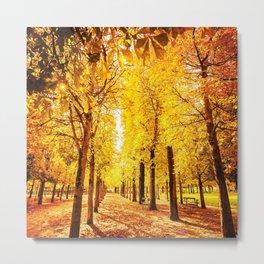 autumn park Metal Print
