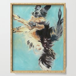 Let's Fly Border Collie Dog Portrait Serving Tray