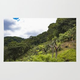 Dragon Fruit Fields Growing on the Side of a Hill in the Rainforest of Nicaragua Rug