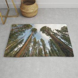 Redwood Sky - Giant Sequoia Trees Rug