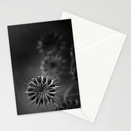 432 Hz Stationery Cards