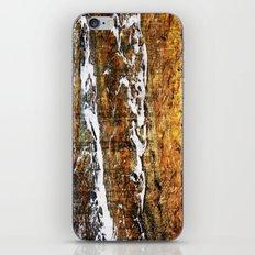 fading slowly.... iPhone & iPod Skin