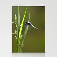 dragonfly Stationery Cards featuring Dragonfly by Christina Rollo