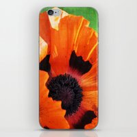 poppy iPhone & iPod Skins featuring POPPY by Teresa Chipperfield Studios