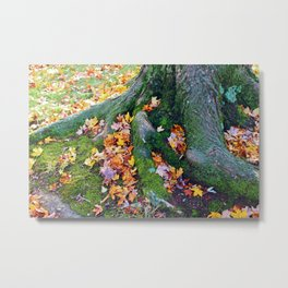 Roots And Leaves Metal Print