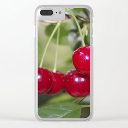 Cherries, fresh on the tree Clear iPhone Case