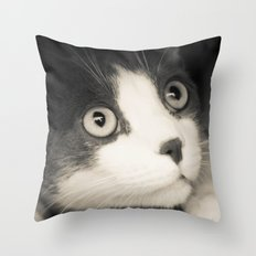 What do you think Mr Cat? Throw Pillow