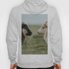 Sheeply in Love - Animal Photography from Iceland Hoody