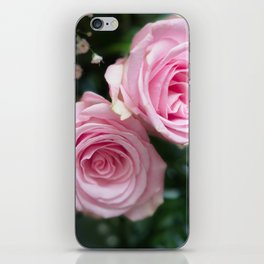 Light Pink Roses with bokeh iPhone Skin