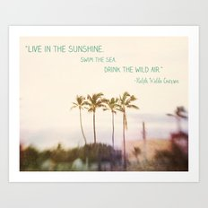 Sunshine, Sea, Air Art Print