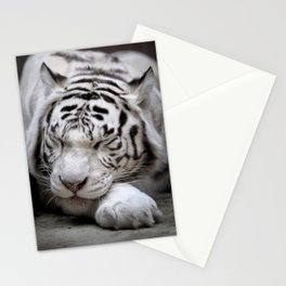 White tigress Stationery Cards