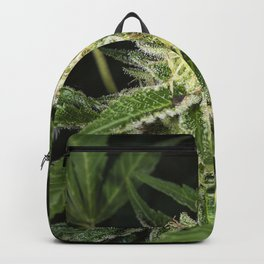 cannabis flower and leaves Backpack