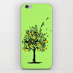 Orange tree Orchard iPhone & iPod Skin