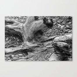 Coastal Texture Canvas Print