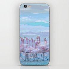 Flamingos #7, fun design iPhone & iPod Skin