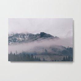 Swiss Fog IV Metal Print