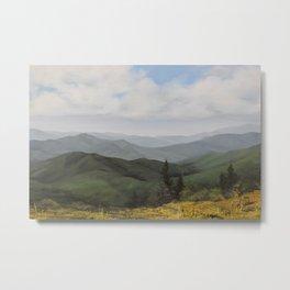 On Round Bald at Roan Mountain Metal Print