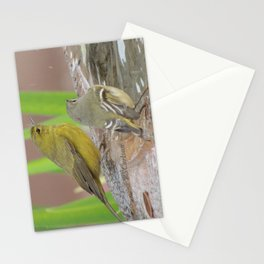 At the Fountain Stationery Cards