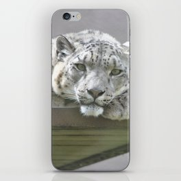 San Francisco Zoo iPhone Skin