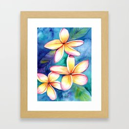 Blooming Plumeria 5 Framed Art Print