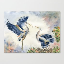 Great Blue Heron Couple Canvas Print