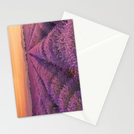 I - Sunrise over blooming fields of lavender in the Provence, France Stationery Cards