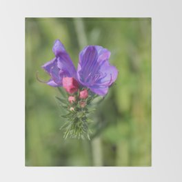 Viper's bugloss blue and pink flowers 2 Throw Blanket