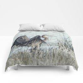 Arriving Comforters