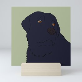 Black Labrador Retriever With Sad Eyes Mini Art Print