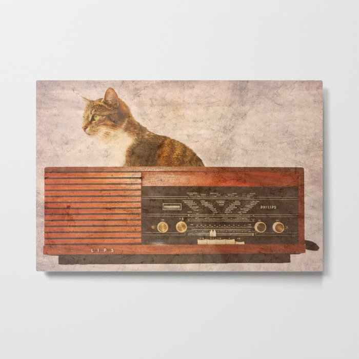 The Cat and the Radio Metal Print