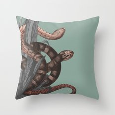 Snakes (animals collection) Throw Pillow
