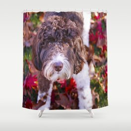 Labradoodle In Autumn Shower Curtain