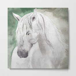 Cathy's white horse Metal Print