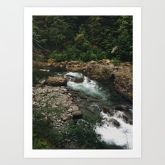 Olympic National Park River Art Print